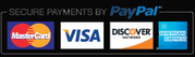 Picture of PayPal Logo
